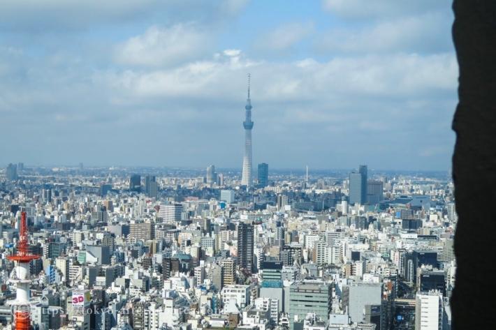 2016年6月アマン東京のライブラリーからの景色
